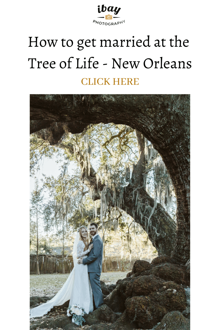 How to get married at the Tree of Life New Orleans