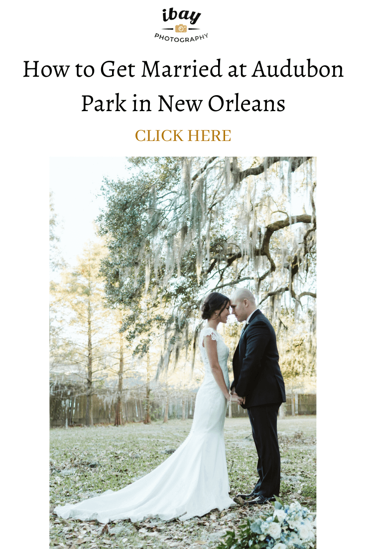 How to Get Married at Audubon Park in New Orleans Louisiana